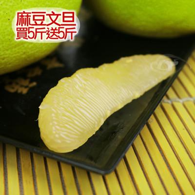 (買5斤送5斤)國家級50年老欉特選優品麻豆文旦精品禮盒5台斤 (3.8折)