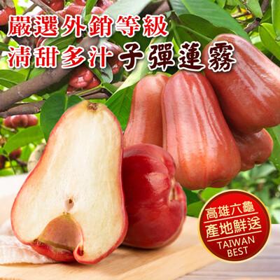 【禾鴻】高雄六龜嚴選外銷等級清甜多汁子彈蓮霧-小 (5.1折)
