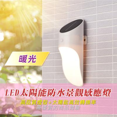 LED太陽能防水景觀感應燈 (光控+體感) (2折)