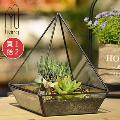 [買一送二]微景觀幾何造型玻璃花房/小溫室(錐型)再送↘人造葉+多肉盆栽【YU Living】 (6.7折)
