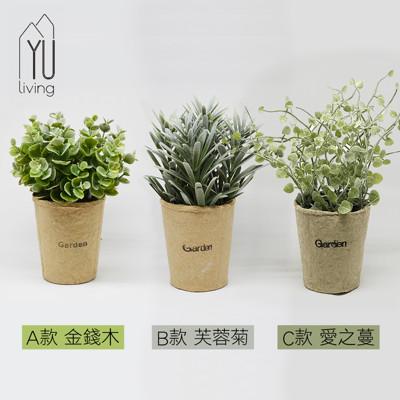 【YU Living】迷你仿真小清新綠色植物裝飾盆栽(A金錢木/B芙蓉菊/C愛之蔓 三款) (8.1折)