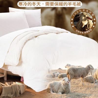 【三井武田】超保暖羊毛被/土耳其發熱羊毛被/抗寒發熱被 1881 (6.5折)