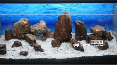 魚缸背景紙海藍色岩石枯木雙面背景畫壁紙水族箱裝飾海洋景觀60高 (8折)