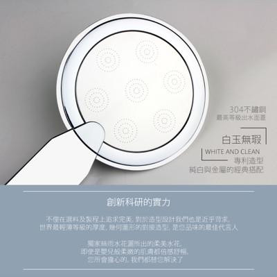 鏡面絲雨蓮蓬頭 (5.3折)