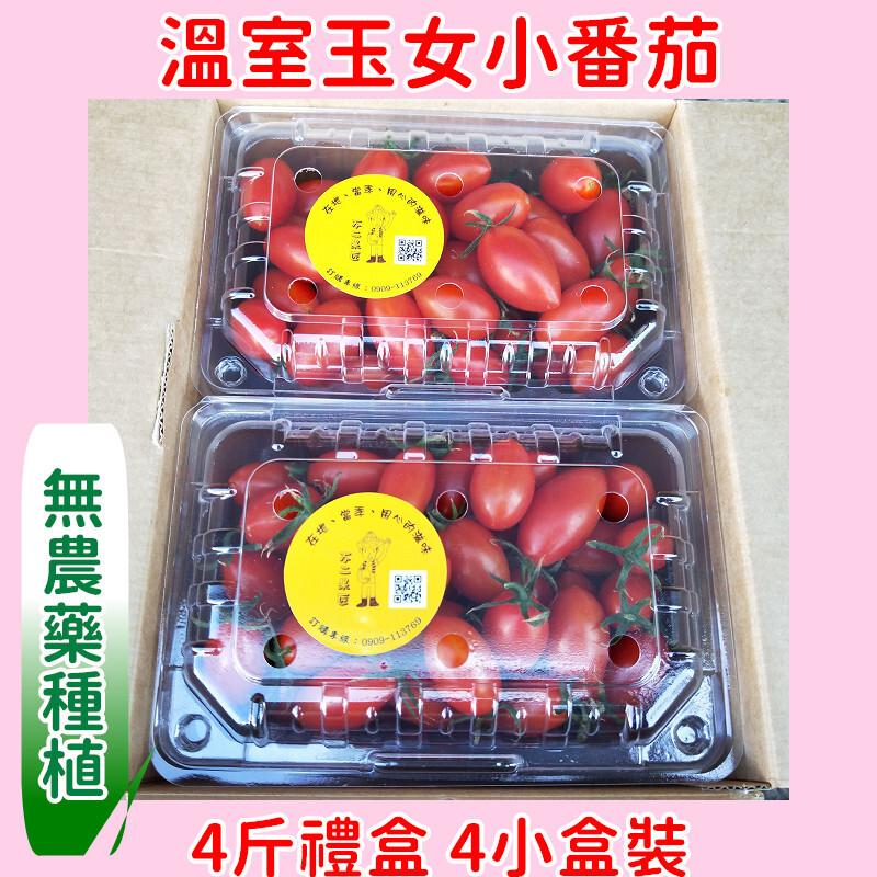 溫室玉女小番茄4斤禮盒(4小盒裝)