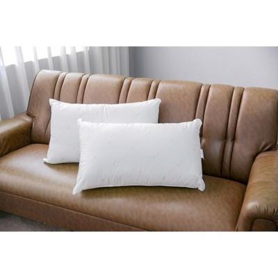 台灣製 高級 防螨 抗菌枕 枕頭 寢室 寢飾 寢具 抱枕 (60*35*20) (4折)